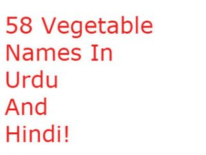 58 Vegetable Names In Urdu And Hindi!
